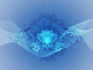Kripalu Yoga and Yoga Teacher Training