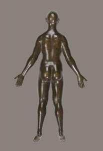 the anatomy of yoga poses