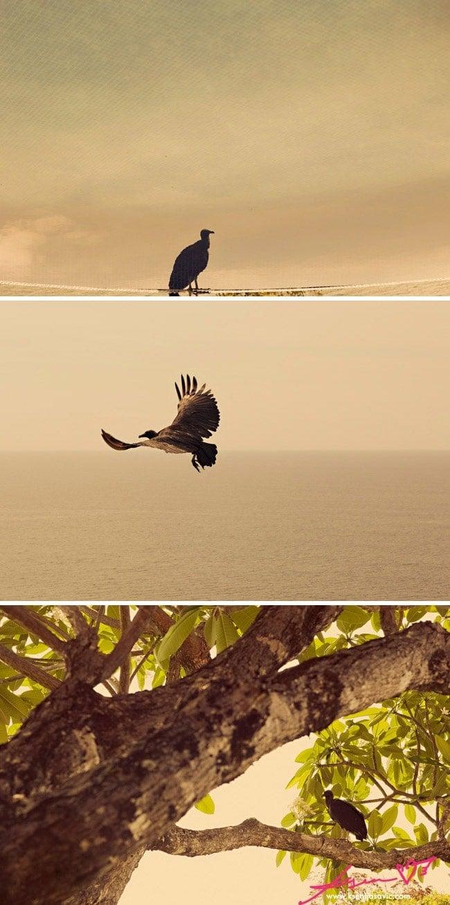 Costa Rica – Photo Collection by Ksenija Savic