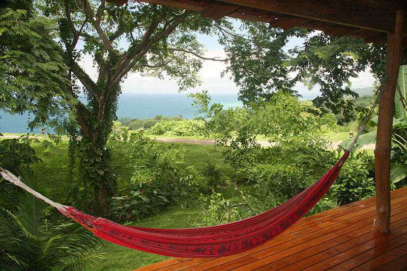 Medium image of costa rica hammock