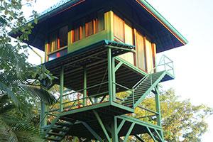 Anamaya's Treehouse