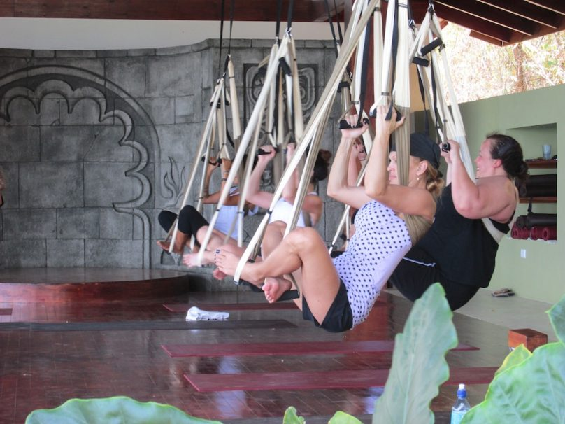 Ascension-Alignment Aerial Yoga Teacher Training