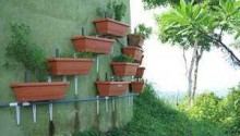 vertical-garden-costa-rica