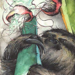 sloth-jellyWEB