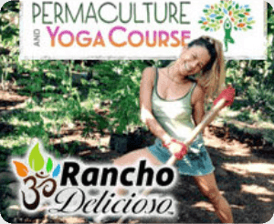 permaculture training course