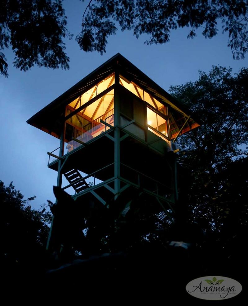 Night view of the Garuda's Nest