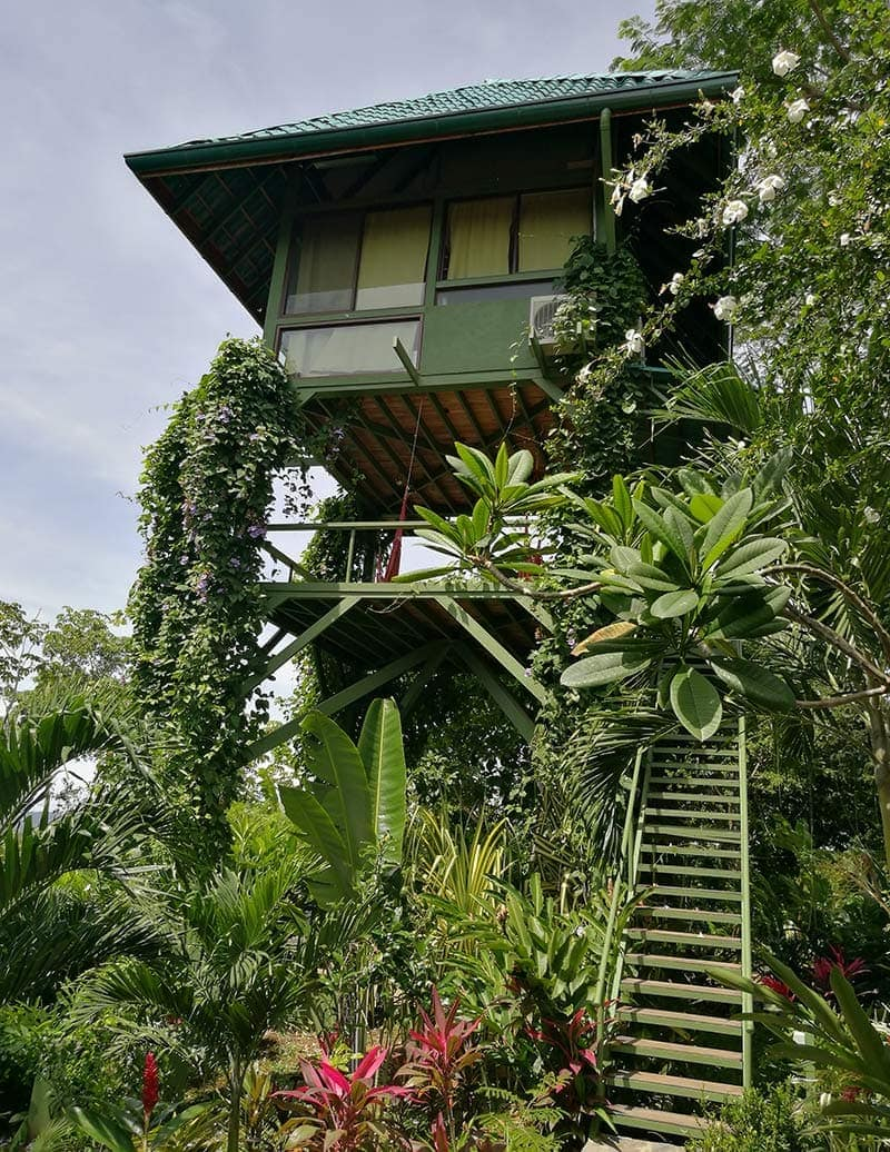 "Our Tower Treehouse, called ""The Garuda's Nest"""