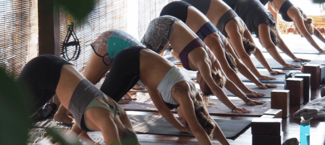 Yoga Retreat with Erica Cohen