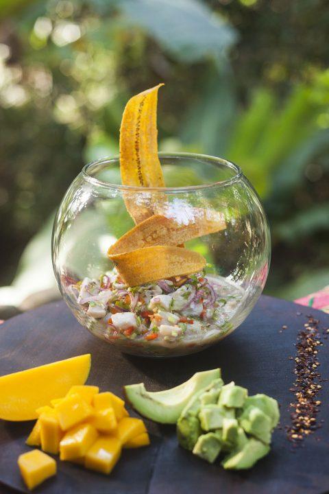 Tropical Ceviche